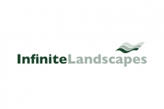 Infinite Landscapes Identity