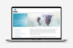 iStar Website